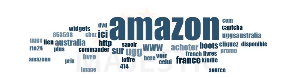 Le profil d'ancre d'Amazon.fr